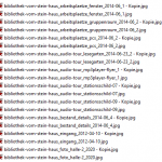Screenshot FastRenamer Beispiel-Dateien 1